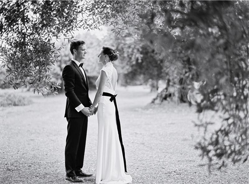 Olive Tree Portrait